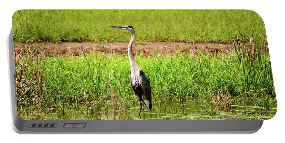 Blue Heron Portable Battery Charger featuring the photograph Blue Heron by Michelle Rollins