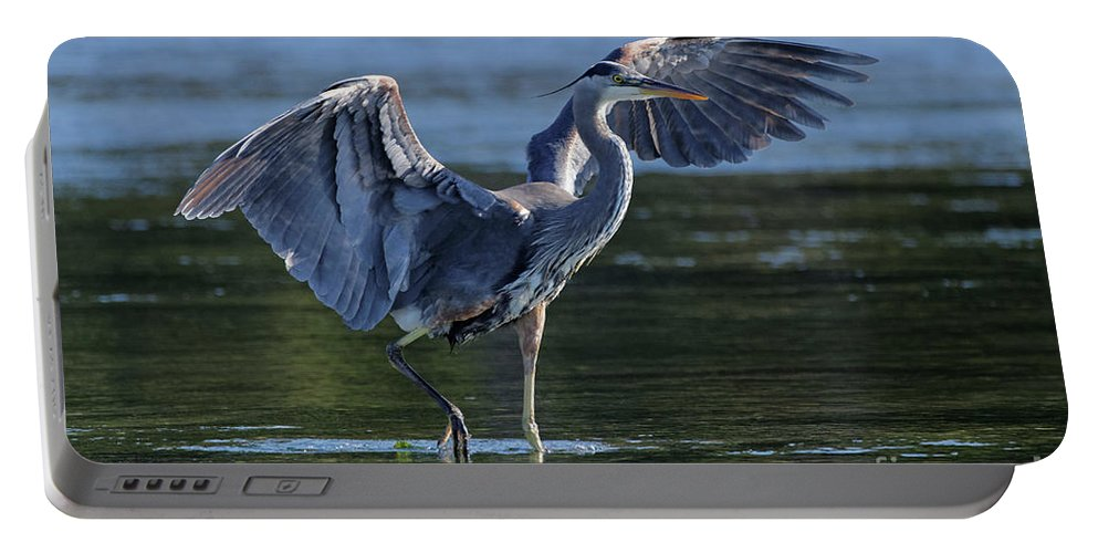 Great Blue Heron Portable Battery Charger featuring the painting Blue Heron Show-off by Sue Harper