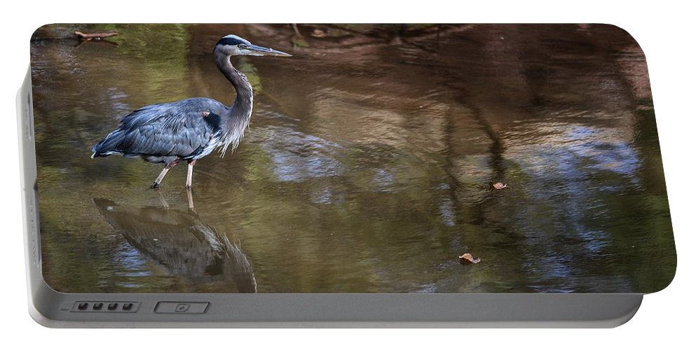 Portable Battery Charger featuring the photograph Blue Heron Stalking by Buck Buchanan