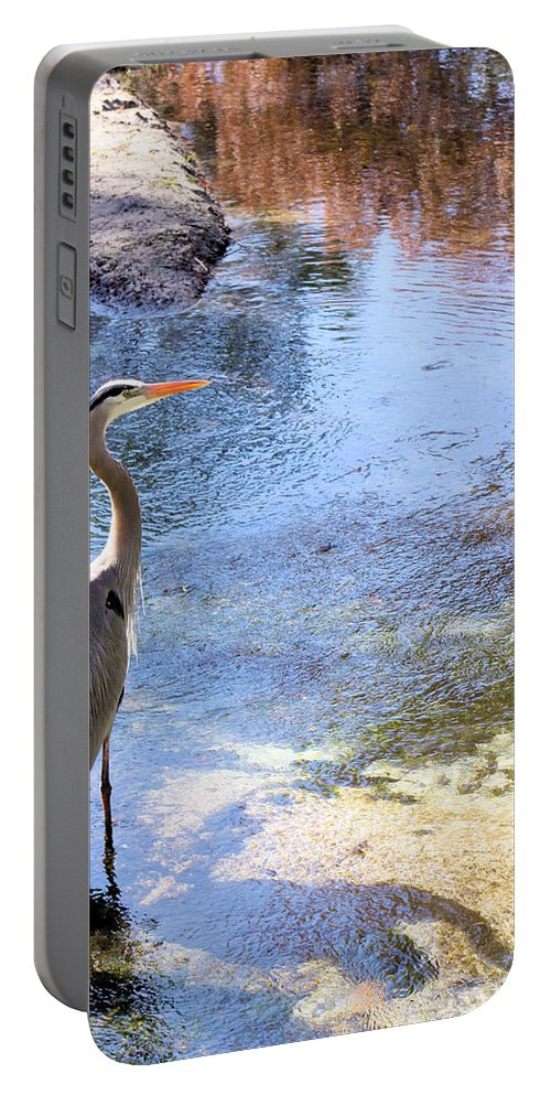 Great Blue Heron Portable Battery Charger featuring the photograph Blue Heron With Shadow by Kristin Elmquist