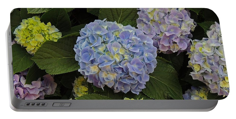 Photographic Print Portable Battery Charger featuring the photograph Blue Hydrangeas by Marian Bell