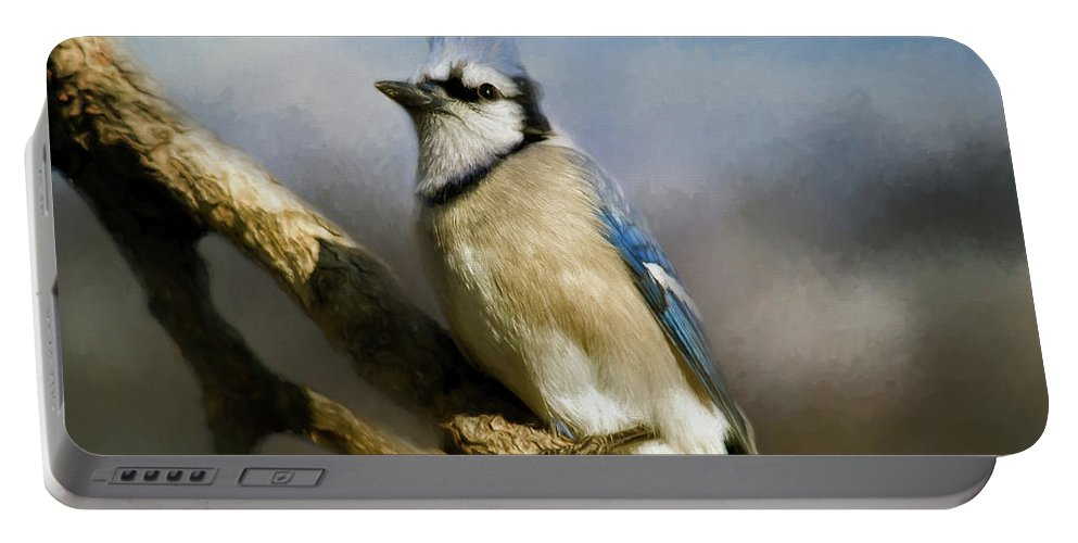 America Portable Battery Charger featuring the photograph Blue Jay by Lana Trussell