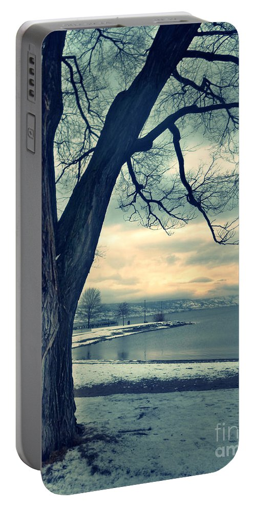 Tree Portable Battery Charger featuring the photograph Blue Morning by Tara Turner