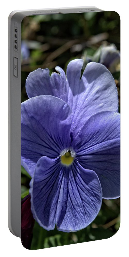 Royal Portable Battery Charger featuring the photograph Blue Pansy by FineArtRoyal Joshua Mimbs