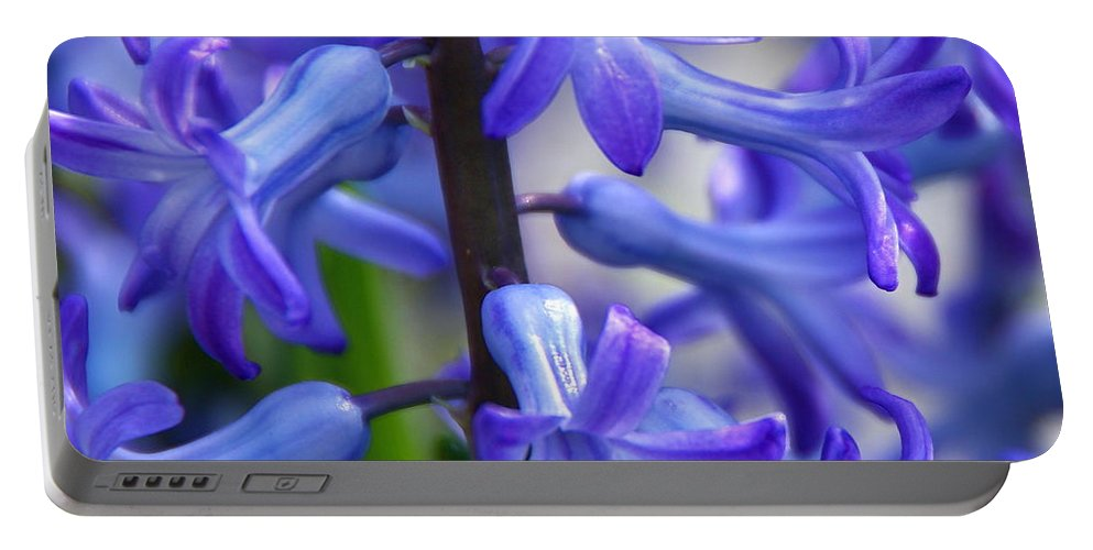 Blue Hyacinth Portable Battery Charger featuring the photograph Blue Rhapsody by Byron Varvarigos
