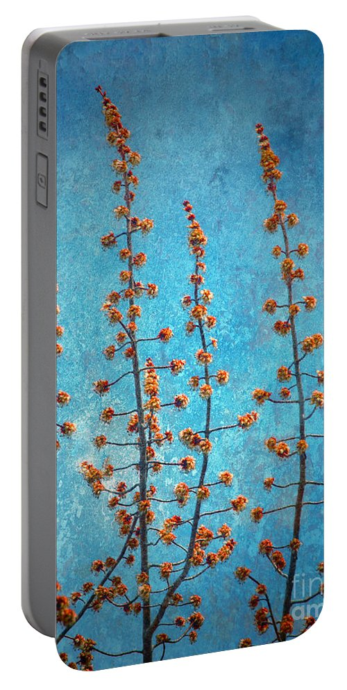 Trees Portable Battery Charger featuring the photograph Blue Sky On A Sunday by Tara Turner