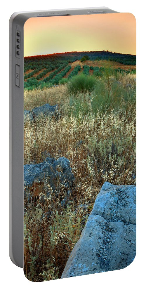 Iznajar Portable Battery Charger featuring the photograph blue stones amongst the olive groves near Iznajar Andalucia Spain by Mal Bray