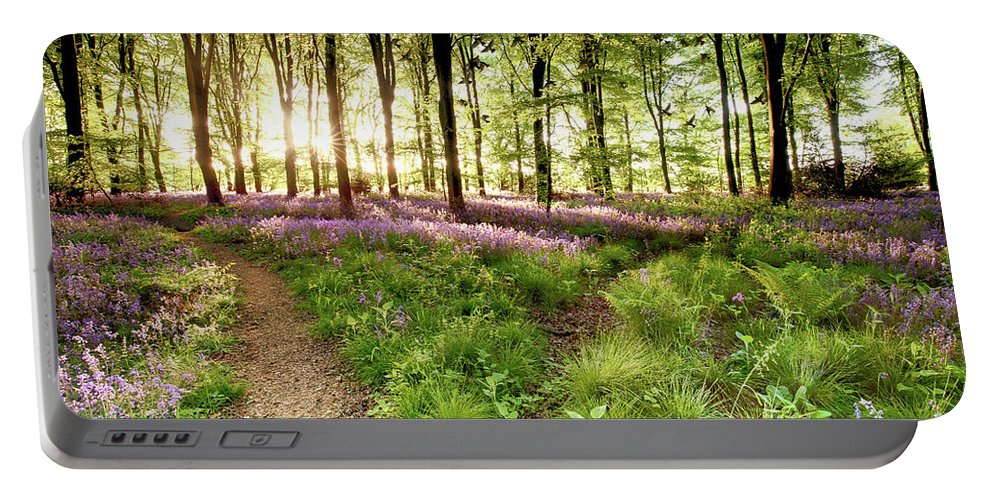 Bluebells Portable Battery Charger featuring the photograph Bluebell Woods With Birds Flocking by Simon Bratt Photography LRPS
