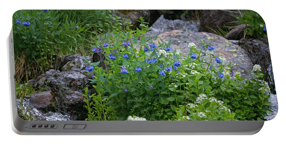 Wildflowers Portable Battery Charger featuring the photograph Bluebells by Heather Coen