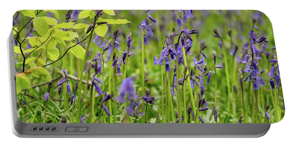 Judy Woods Portable Battery Charger featuring the photograph Bluebells In Judy Woods by Mike Walker
