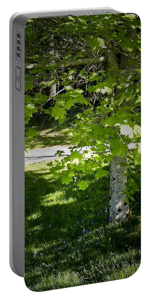 Irish Portable Battery Charger featuring the photograph Bluebells In Killarney National Park Ireland by Teresa Mucha