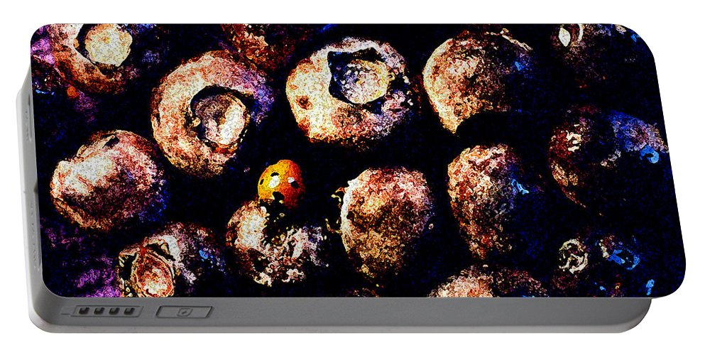 Blueberries Portable Battery Charger featuring the photograph Blueberries And Ladybug by Nancy Mueller