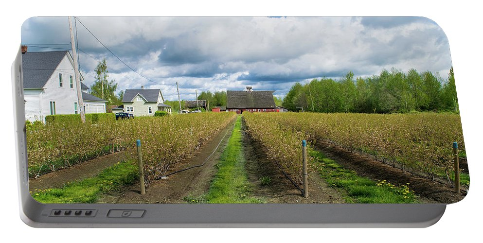 Blueberry Portable Battery Charger featuring the photograph Blueberry Rows by Tom Cochran