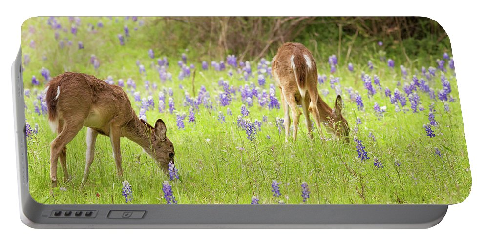 Cutts Nature Photography Portable Battery Charger featuring the photograph Bluebonnets And Whitetails by David Cutts
