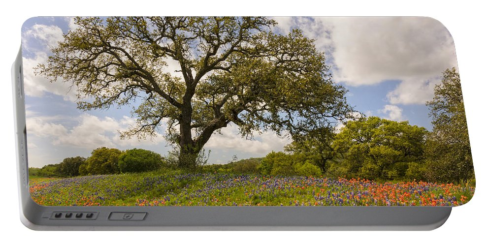 Bluebonnet Portable Battery Charger featuring the photograph Bluebonnets Paintbrush And An Old Oak Tree - Texas Hill Country by Brian Harig