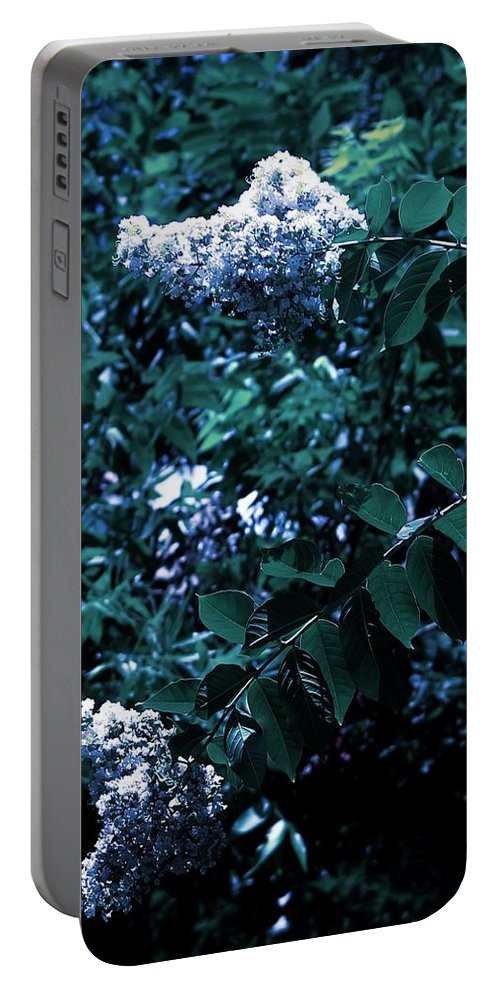 Landscape Portable Battery Charger featuring the photograph Blues And Greens by KG Thompson