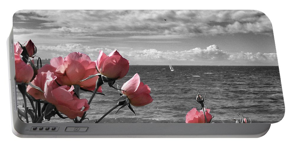 Summer Portable Battery Charger featuring the photograph Blustery Summer's Day by Connie Handscomb