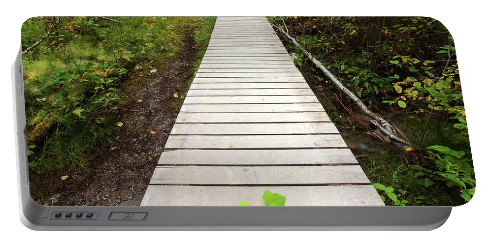 Bushes Portable Battery Charger featuring the digital art Boardwalk To Backguard Falls In British Columbia by Mark Duffy