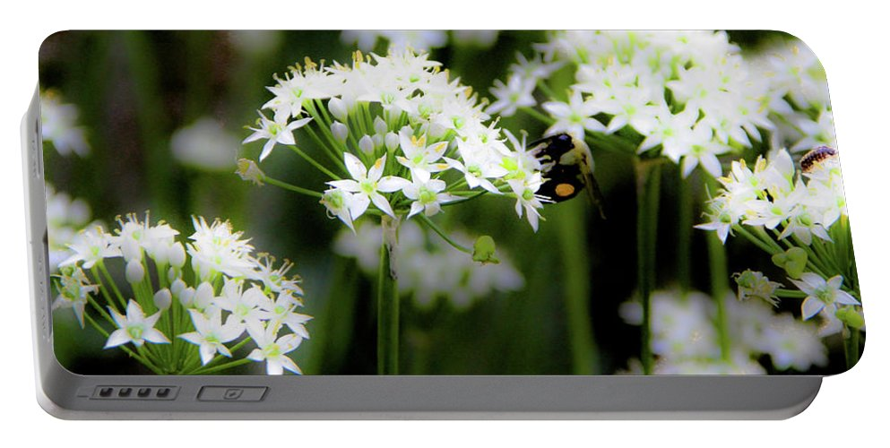 Garden Portable Battery Charger featuring the photograph Bobby And Bug by Donna Fonseca Newton