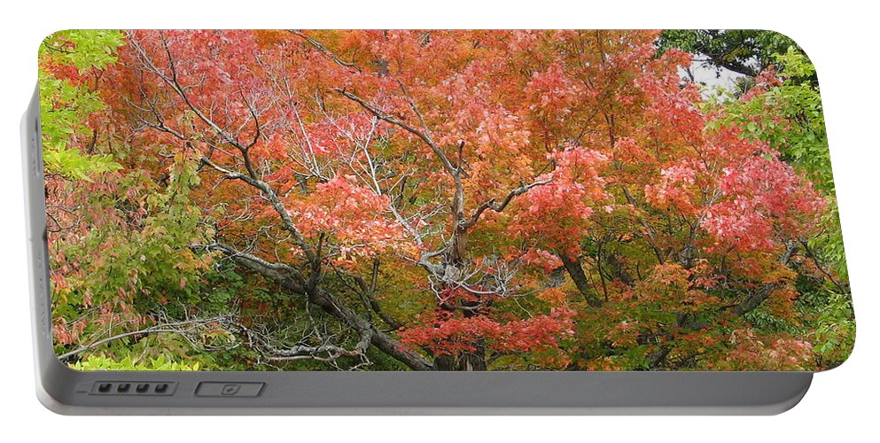 Fall Portable Battery Charger featuring the photograph Bonfire by Kelly Mezzapelle