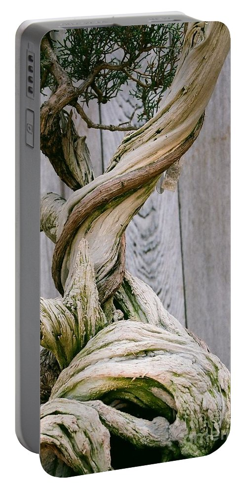 Tree Portable Battery Charger featuring the photograph Bonsai by Dean Triolo