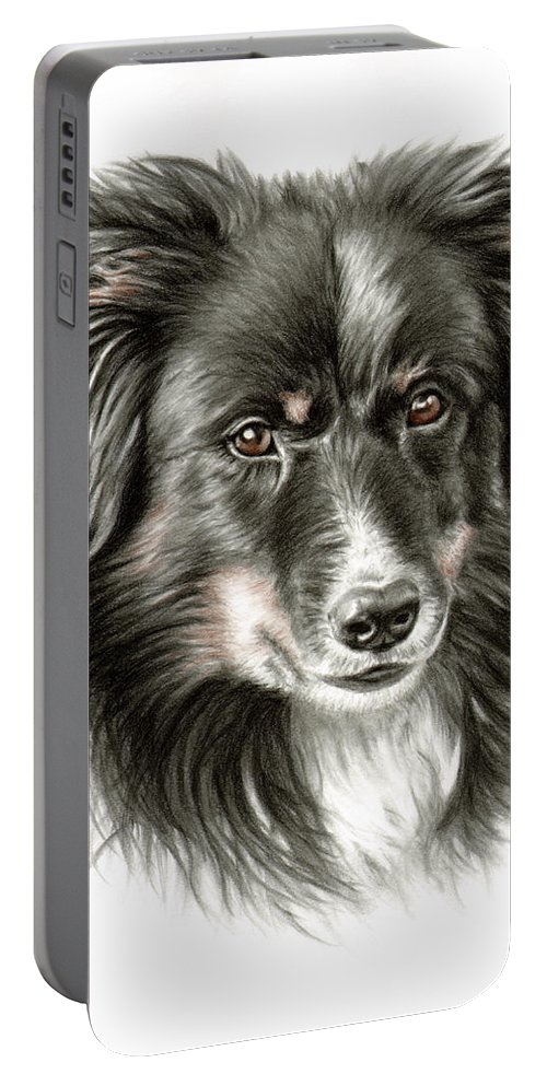 Dog Portable Battery Charger featuring the drawing Border Collie Portrait by Nicole Zeug