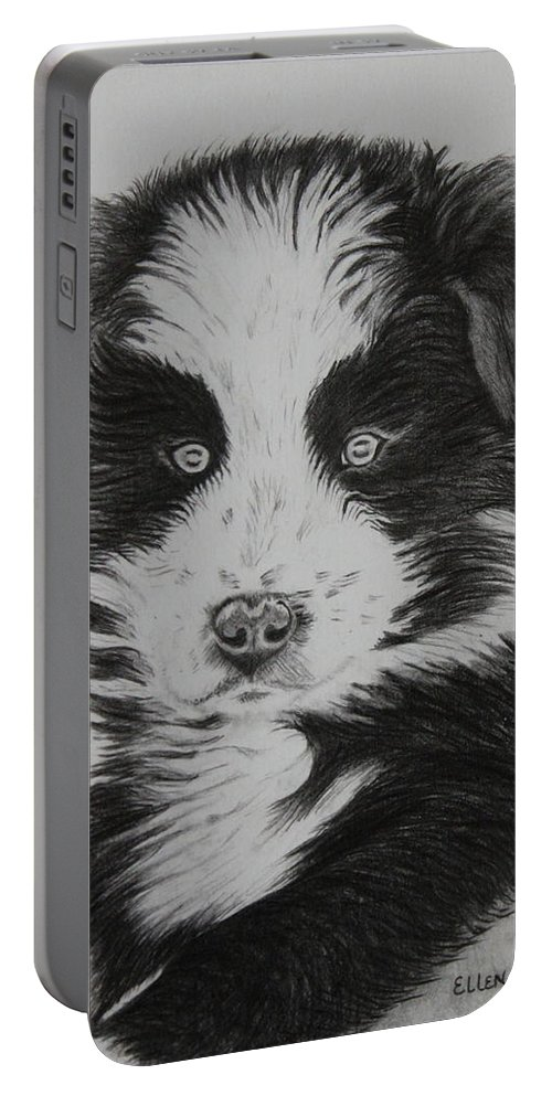 Puppy Portable Battery Charger featuring the drawing Surprised Border Collie Puppy by Ellen Moss