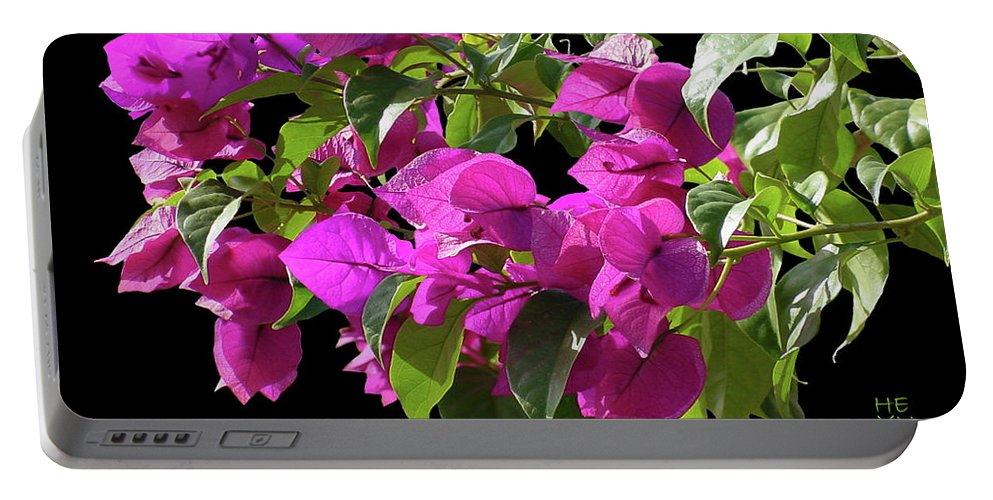 Cutout Portable Battery Charger featuring the photograph Bougainvillea Cutout by Shirley Heyn