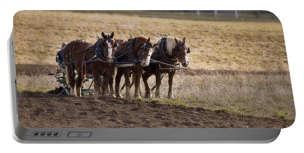 Amish Portable Battery Charger featuring the photograph Boy Waiting With Horses by David Arment