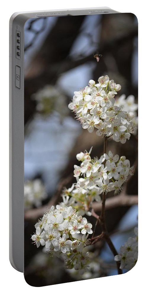 Bradford 15-01 Portable Battery Charger featuring the photograph Bradford 15-01 by Maria Urso