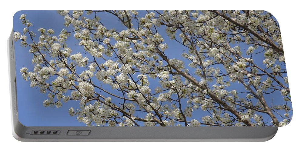 Bradford 15-02 Portable Battery Charger featuring the photograph Bradford 15-02 by Maria Urso