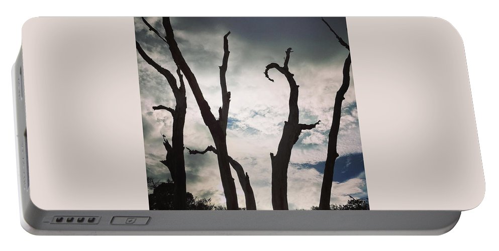 Nature Portable Battery Charger featuring the photograph Branch Silouettes On Skeleton Beach by Aimee Naworal
