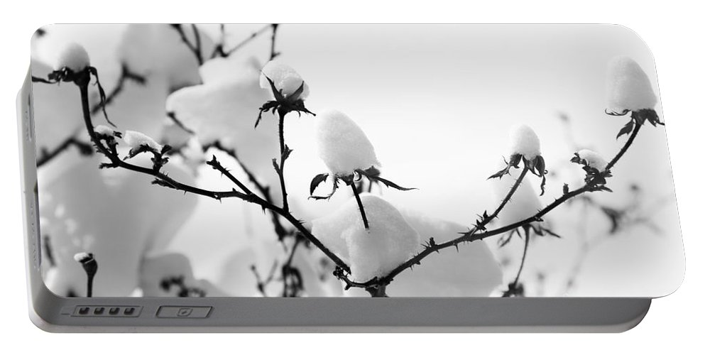 Branches Portable Battery Charger featuring the photograph Branches by Amanda Barcon