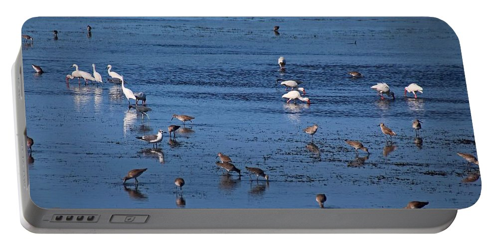 Birds Portable Battery Charger featuring the photograph Breakfast Is For The Birds by Michiale Schneider