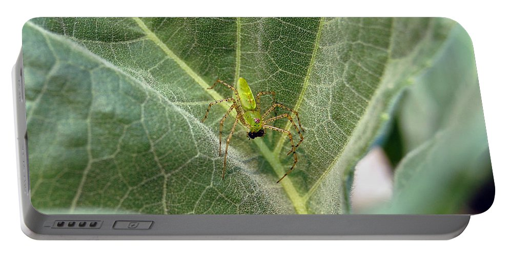 Spider Portable Battery Charger featuring the photograph Breakfast by Robert Meanor
