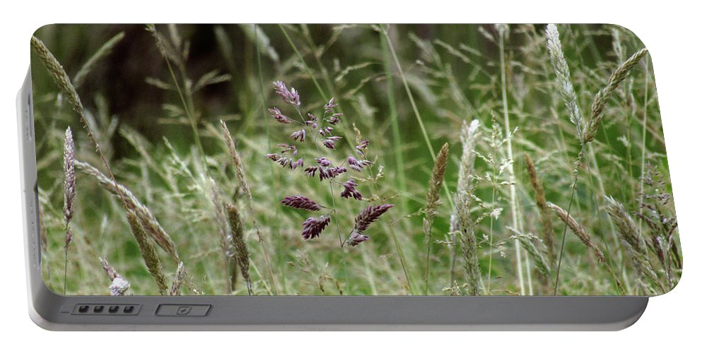 Grass Portable Battery Charger featuring the photograph Breezy Summer 2 by Kim Tran