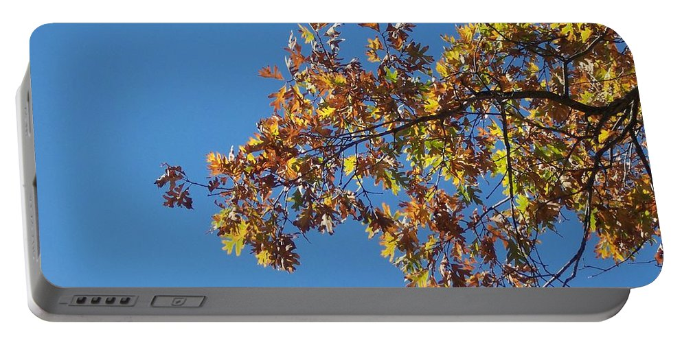 Branch Portable Battery Charger featuring the photograph Bright Autumn Branch by Michelle Miron-Rebbe