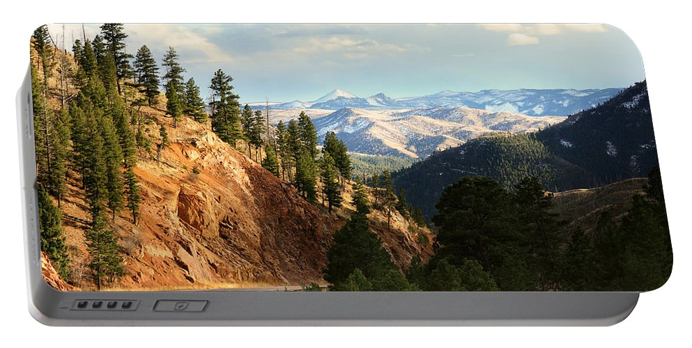 Buffalo Portable Battery Charger featuring the photograph Brilliance by Brian Gustafson
