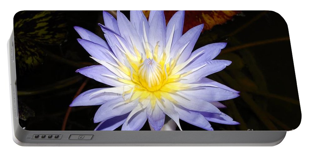 Lily Portable Battery Charger featuring the photograph Brilliant Beauty by David Lee Thompson