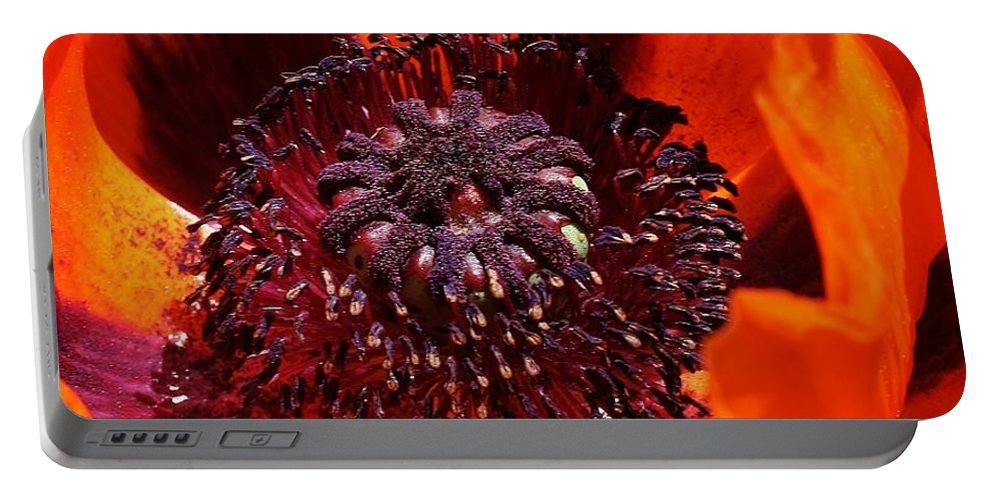 Flora Portable Battery Charger featuring the photograph Brilliant Poppy by Bruce Bley