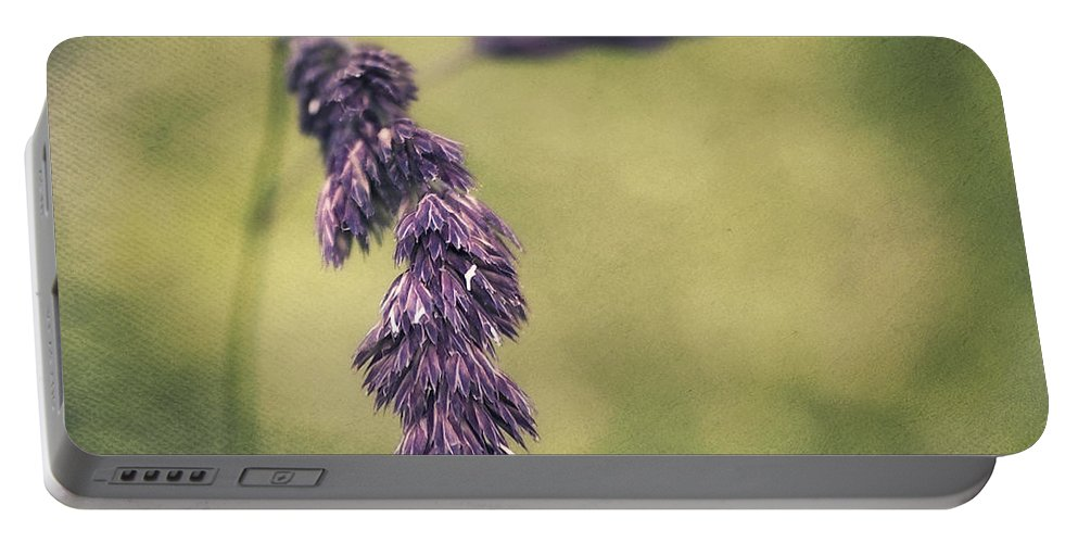 Grass Portable Battery Charger featuring the photograph Brin D'herbe by Angela Doelling AD DESIGN Photo and PhotoArt