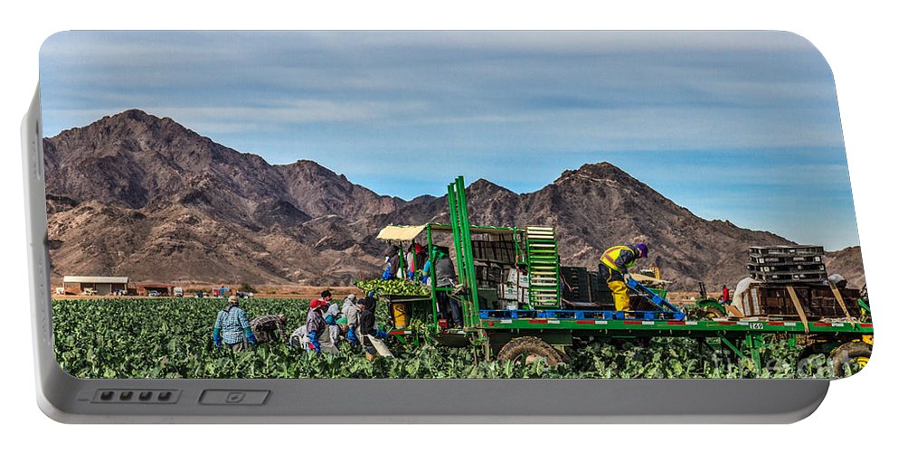 Healthy Portable Battery Charger featuring the photograph Broccoli Harvest by Robert Bales