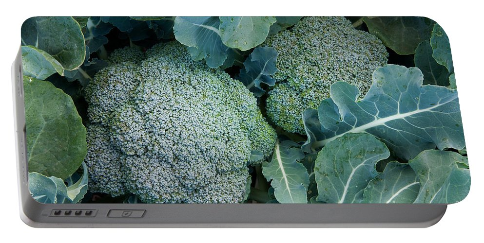 Broccoli Portable Battery Charger featuring the photograph Broccoli by Inga Spence