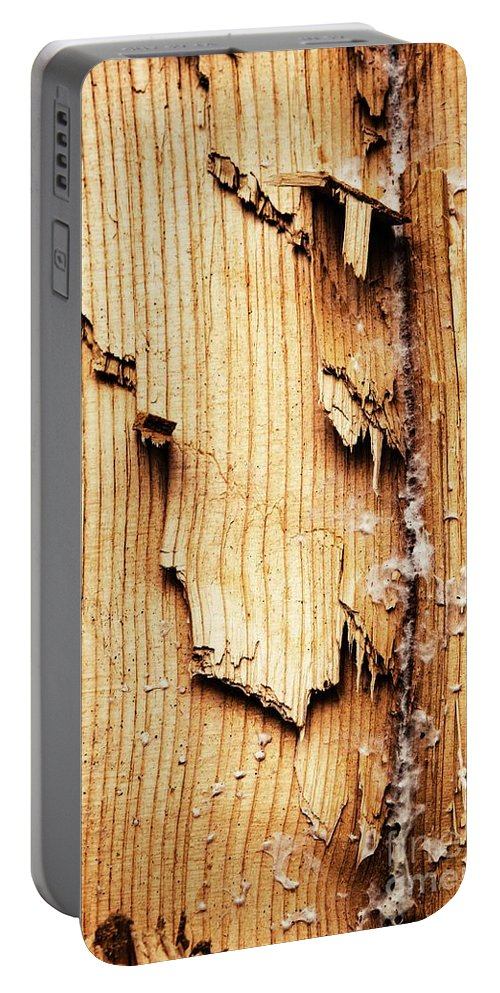 Wood Portable Battery Charger featuring the photograph Broken Old Stump Spruce by Jozef Jankola