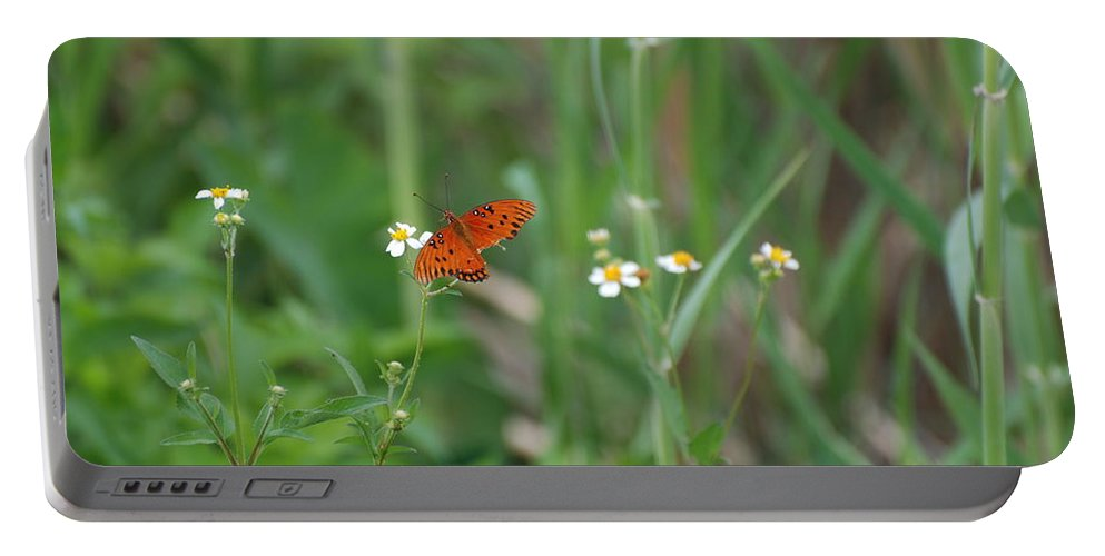 Butterfly Portable Battery Charger featuring the photograph Broken Wing by Rob Hans