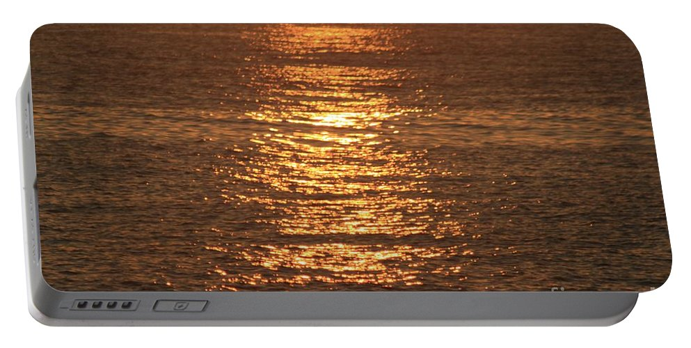 Ocean Portable Battery Charger featuring the photograph Bronze Reflections by Nadine Rippelmeyer