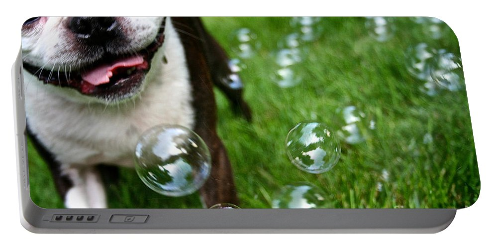 Animal Portable Battery Charger featuring the photograph Bubble Busting by Susan Herber
