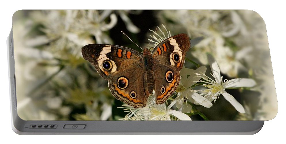 Butterfly Portable Battery Charger featuring the photograph Buckeye On Wildflowers by Sandy Keeton