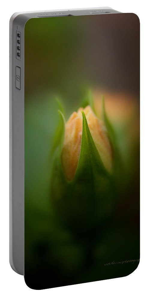 Flower Bud Portable Battery Charger featuring the photograph Bud by Vicki Ferrari