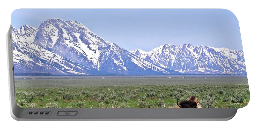 Buffalo Portable Battery Charger featuring the photograph Buffalo At Rest by Douglas Barnett